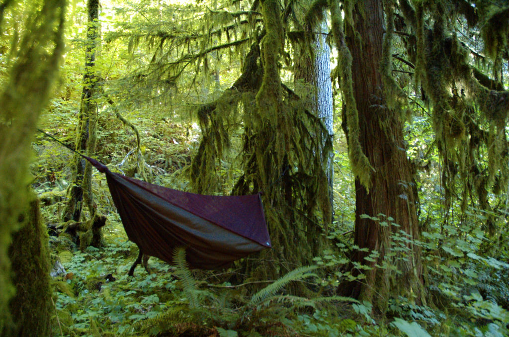 why to switch from tent camping to hammock camping